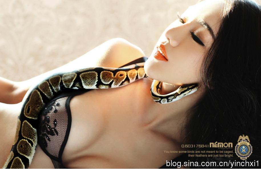 美女蛇 金美辛