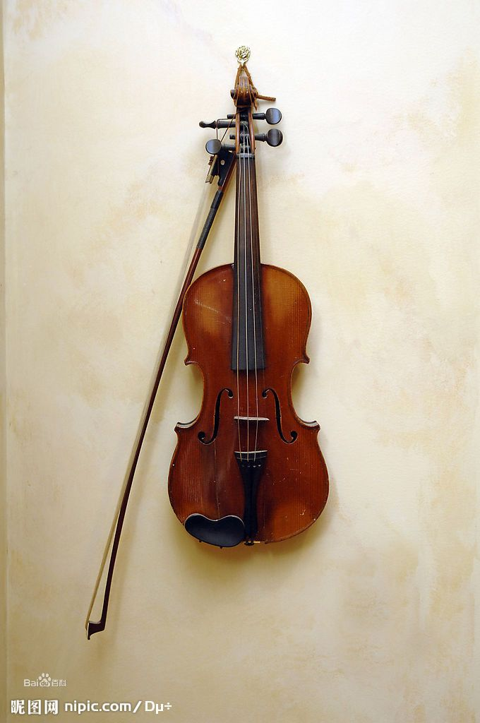 小提琴是最好的独奏项目,若说钢琴是乐器之王,那么小提琴则为乐器之后图片