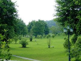 广州大夫山森林公园图片