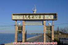 东营天鹅湖