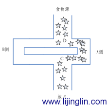 图4 蚁群最终选择的路径