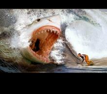 巨齿鲨 - 日志 - 邹远兴 - 文明小博客 - 厦门网图片
