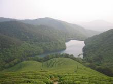 福泉山照片