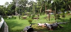 广州动物园园区风光