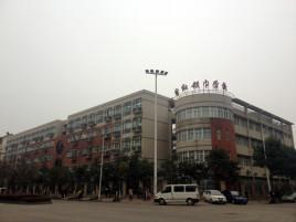武汉市红领巾小学班级推普周小学总结图片