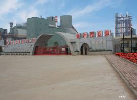 武汉亚东水泥_湖北亚东水泥有限公司