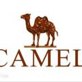 Camel����
