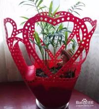 洗衣液瓶子做花盆制作方法图片