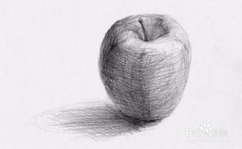 步骤3:用2h铅笔反复画曲线,来表达苹果的圆润感.图片