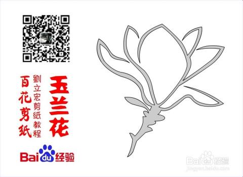 百花剪纸教程 玉兰花5(阳剪)刘立宏一剪刀剪纸图片