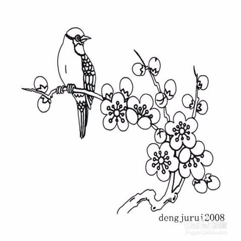 关于梅花的多种简单画法,梅花,梅树的花,花瓣五片,有白,红,粉红等多图片