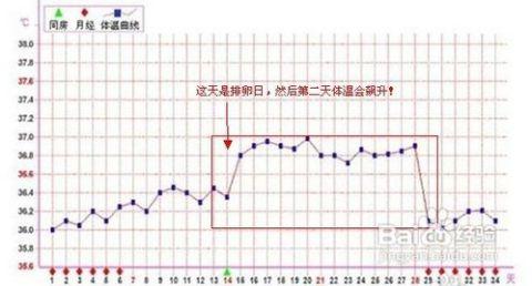 通过基础体温女性可以看出排卵日体温的明显变化
