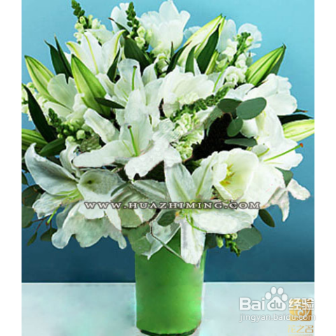 正确的办法是将郁金香移出花瓶,用报纸将花儿包紧,但在枝干底部留出 1图片