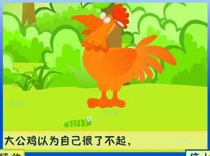 大公鸡的视频和叫声