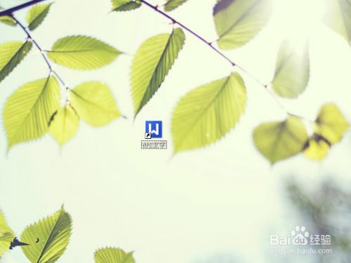 背景 壁纸 花 绿色 绿叶 树叶 植物 桌面 500_375图片