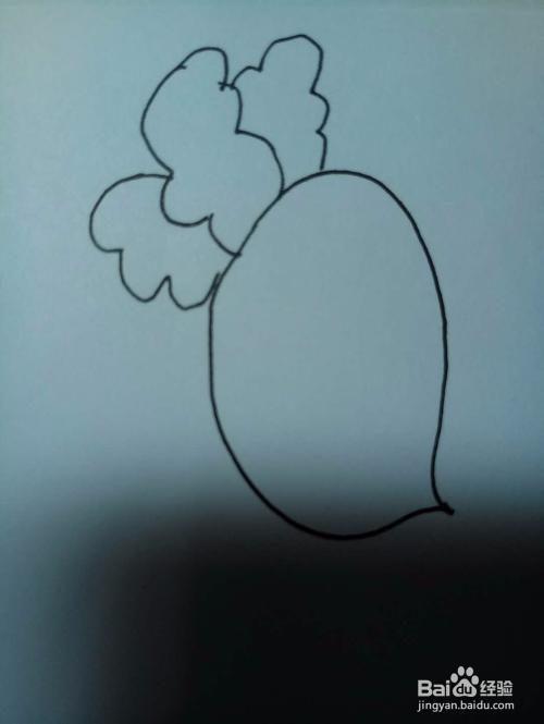 教你画萝卜的简笔画
