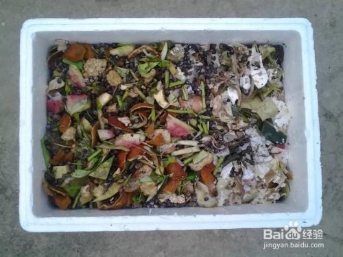 厨余�zamy�m_家庭如何利用厨余自制阳台种菜种花肥料