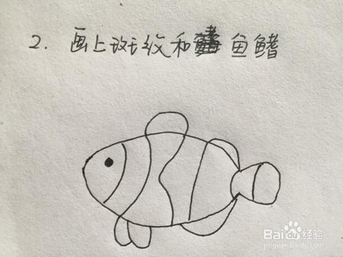 教你几笔画鱼 二