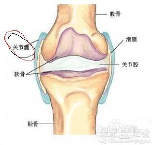 怎样增加膝盖的润滑液