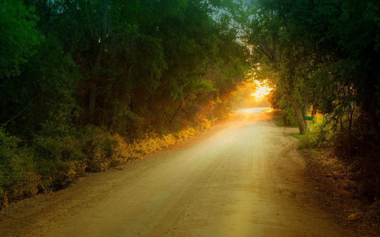 主流图片 唯美 阳光下感受时光 女生都喜欢的 意境唯美图片-阳光唯美