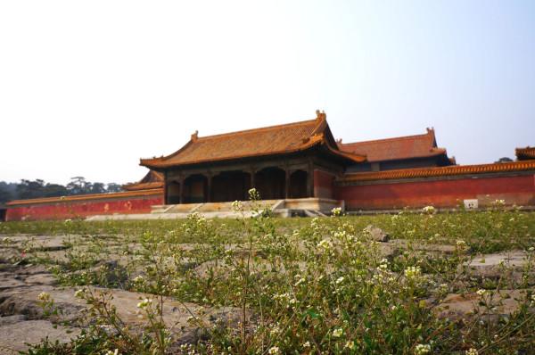 蔚县旅游攻略图片45