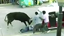 秘鲁:牵牛节场地十分火爆 其中9人受伤