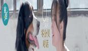 零分贝对话 朱丹现场哽咽 聆听宠物心声