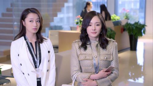 谈判官02:童薇收新人接手谢氏案