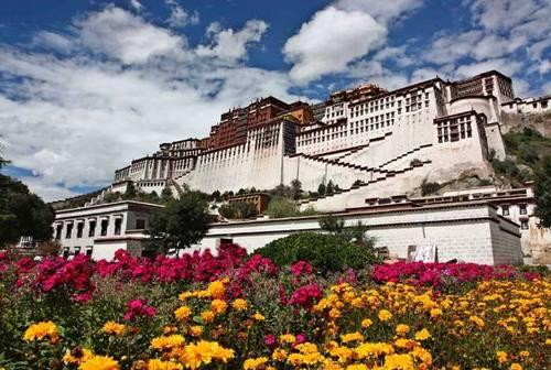 想去西藏旅行,一分钟教你应对高原反应!|飞碟一分钟