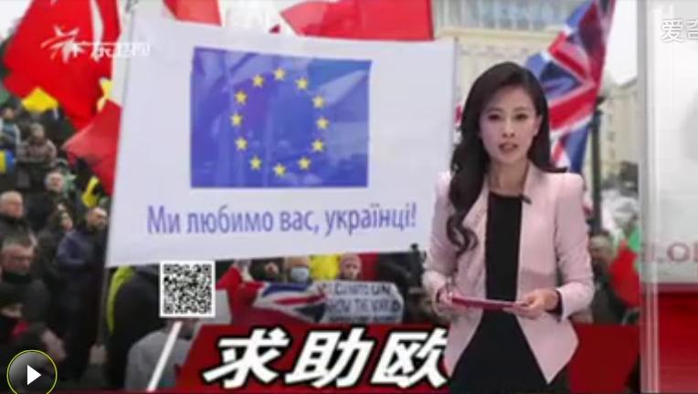 ... 女主持人广东卫视女主持人 广东卫视主持人李琳图片