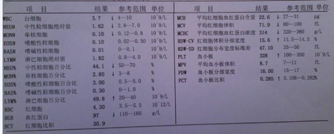 请各位帮我看下我的血细胞分析检验报告单,告知我一下图片