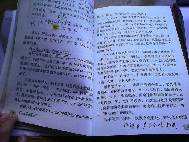 求排比语段3段150字舞钢市个高中几有图片