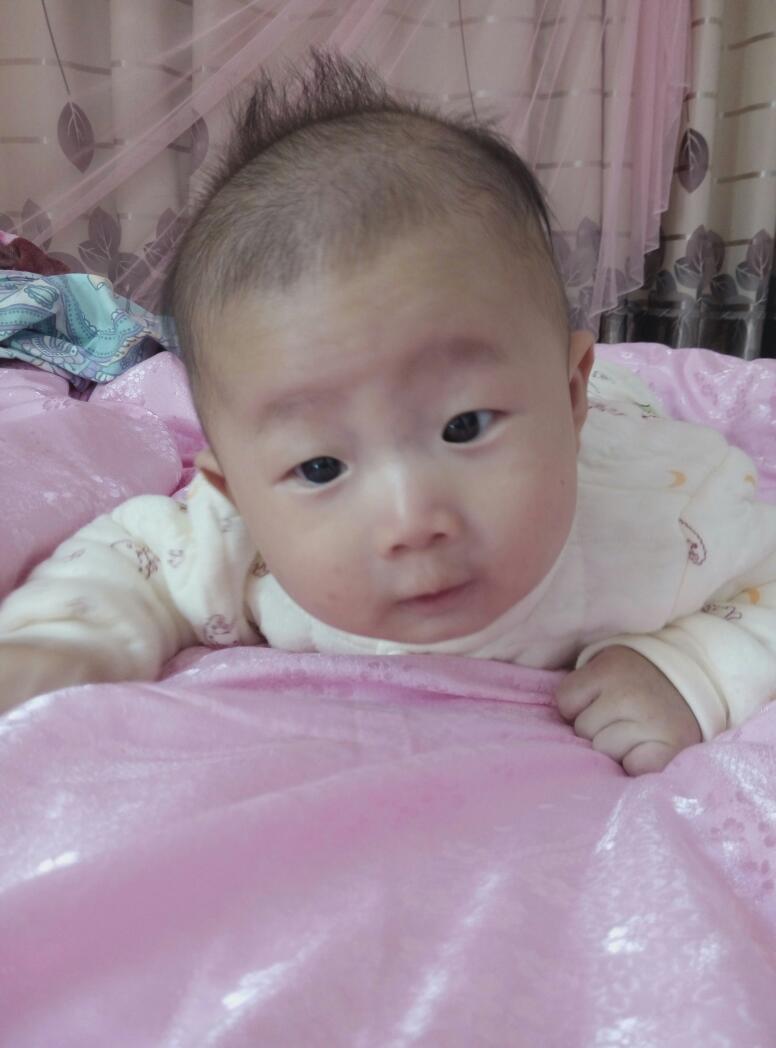 婴儿一个星期长多长头发分享展示图片