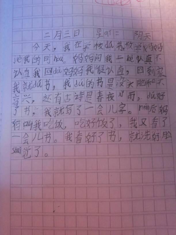 小孩写的日记图片