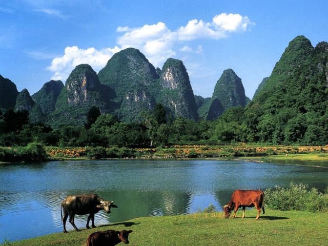 桂林山水高清 桂林山水logo 桂林山水风景画图片