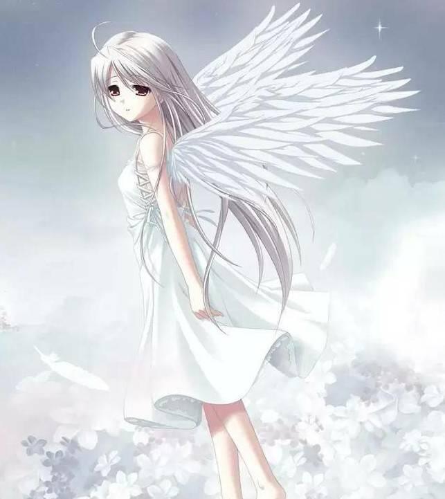 求一张256*256的正方形天使图片,要白羽翼的