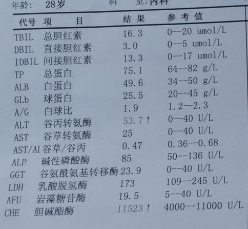 乙肝肝功能异常症状_15 2009-10-28 谷丙转氨酶偏高一点,肝功能六项正常,有乙肝吗 6 2008