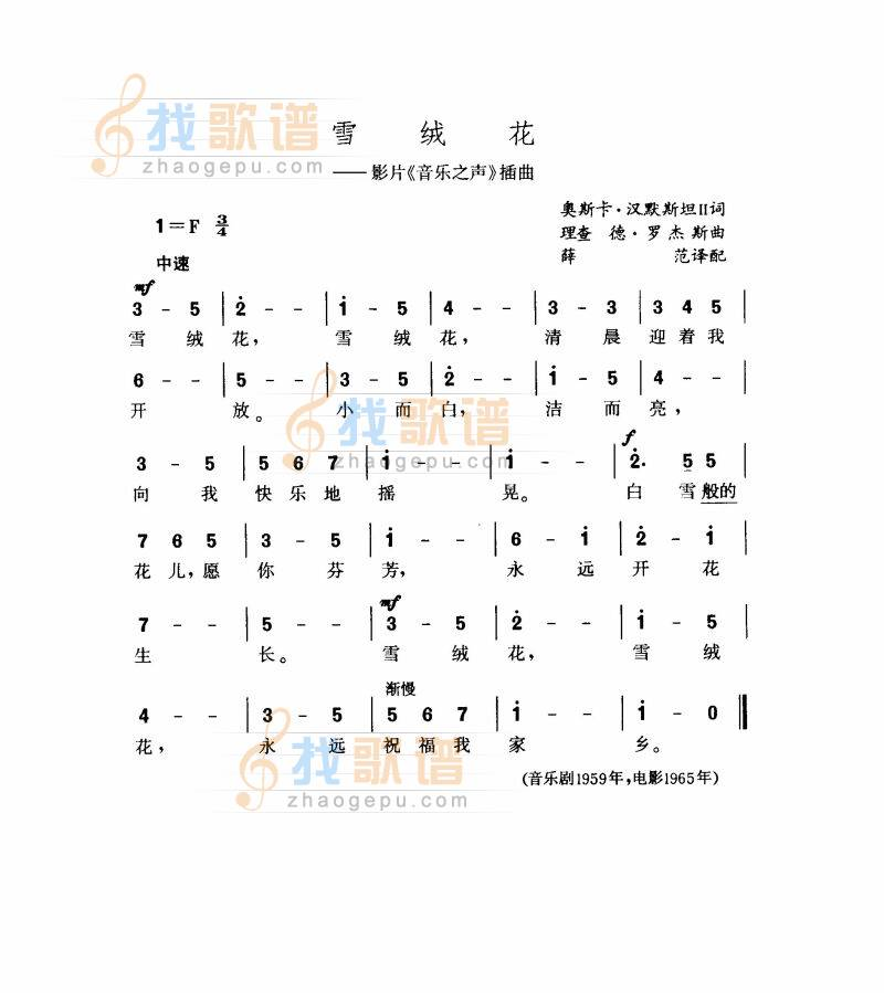 《两只老虎》的 简谱  38
