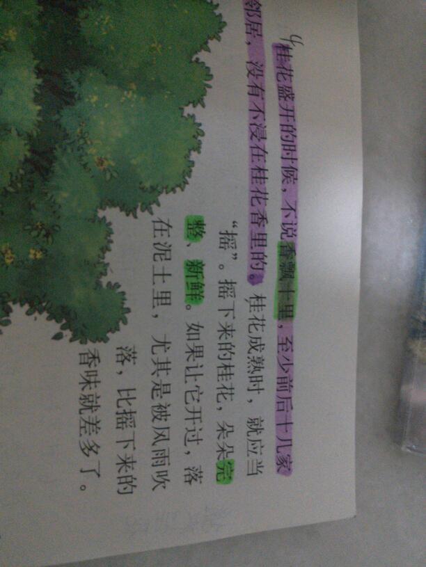 读后感50字读后感手抄报图片高清图片