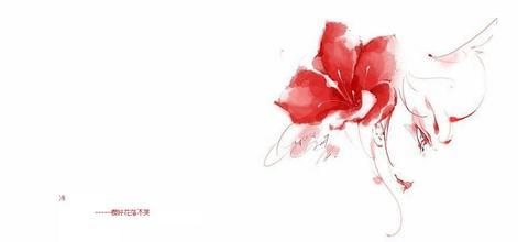 素锦封面素材花瓣网