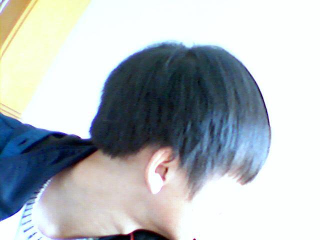 可以弄阿信的头发么图片