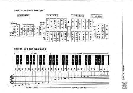 以下是电子琴键盘与五线谱简谱对照图(49键)图片