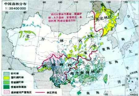 中国森林和沙漠面积地图图片
