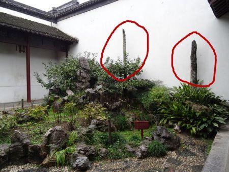 苏州园林里常见的柱状石叫什么名字?
