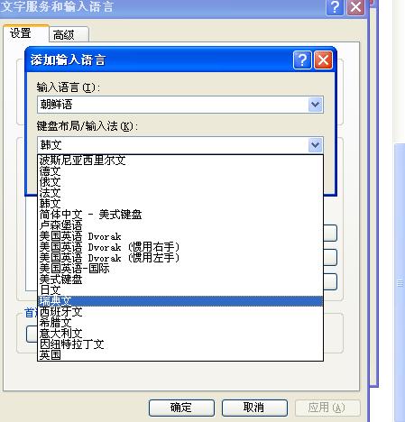 如何安装韩文输入法_怎么安装韩文输入法 添加不进去怎么办