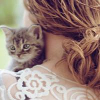 qq头像女版 要有人和猫咪