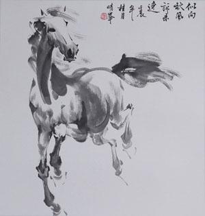 画马的步骤图片
