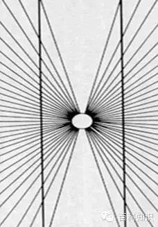 心理视觉错觉图
