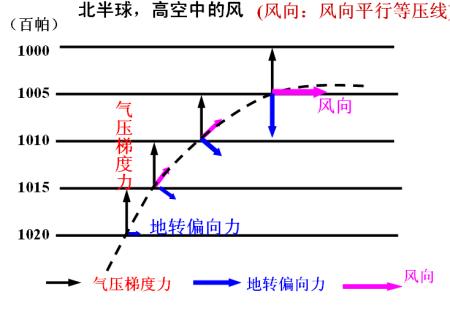 那么水平气压梯度力和地转偏向力的合力是可以作出风向的.图片